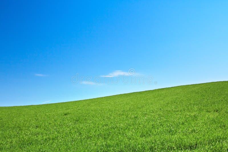 Peaceful grassland stock photos