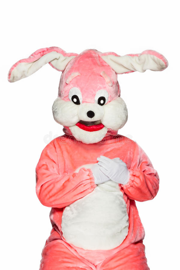Pink rabbit suit isolated on white background royalty free stock photo