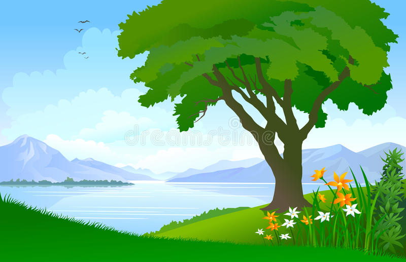 Peaceful lake , a lonely tree and vast blue sky stock illustration