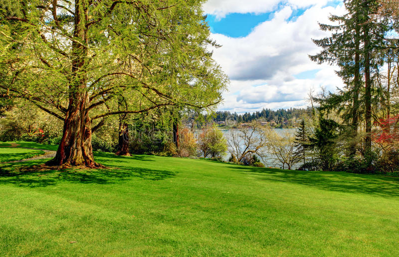 Peaceful Landscape Garden, Lakewood Gardens, Wa Stock Photo - Image ...