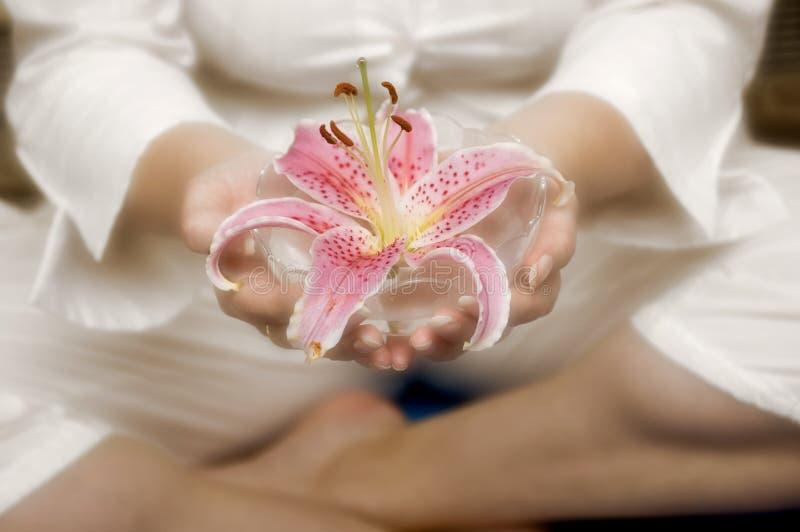 Peaceful Mind Royalty Free Stock Image