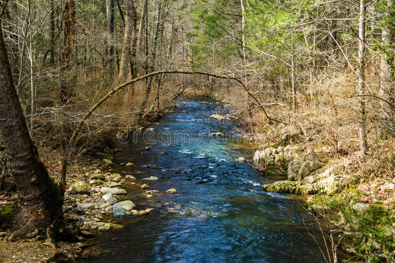 A Peaceful Mountain Trout Stream in the Blue Ridge Mountains. A peaceful mountain trout stream located in the Blue Ridge Mountains of Botetourt County, Virginia stock photography