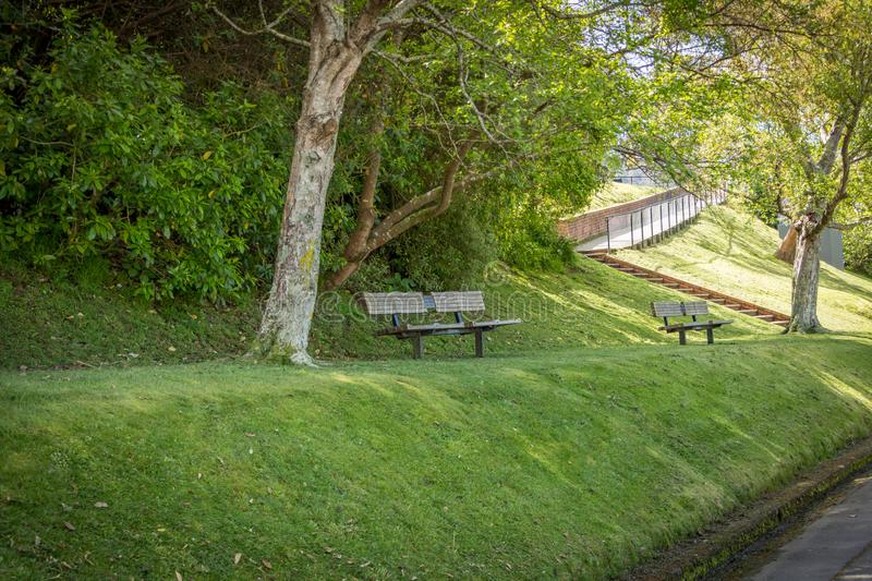 Park Bench Under Tree. Peaceful park bench in the shade of trees royalty free stock images