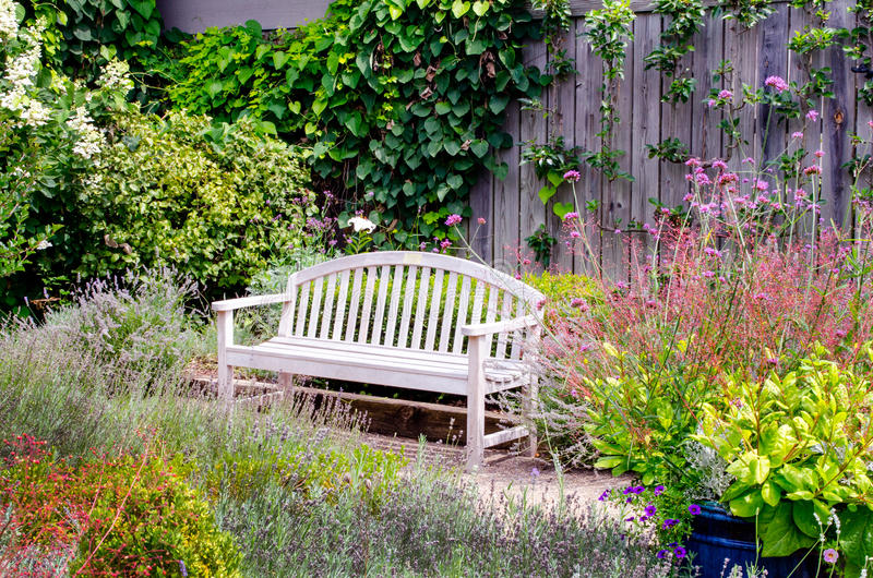 Peaceful park bench in a beautiful summer garden. A peaceful park bench sits in a beautiful summer garden surrounded by flowers, grasses and lots of color stock photo