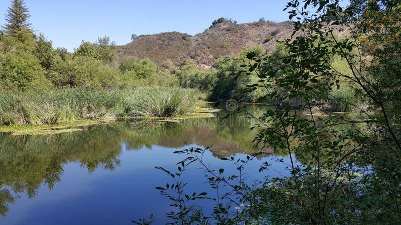 Peaceful pond stock photo