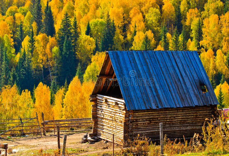 Download Peaceful Rural Village Against Autumn Forest Stock Photo - Image of outdoor, cabin: 21677698