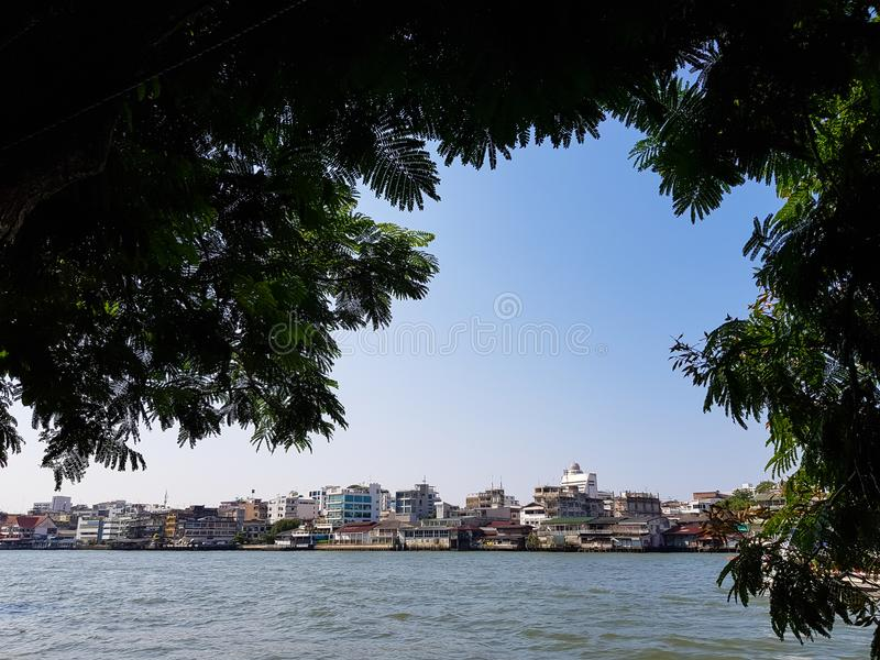 Peaceful scene of Chao Phraya river with riverside buildings skyline and clear blue sky background through big tree foliage frame royalty free stock images