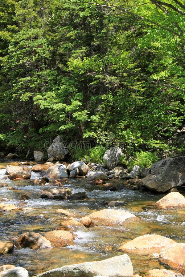 Peaceful scene with running water over rocky area of stream. Peaceful scene of shady tree branches reaching over running water that makes it`s way over rocky stock photography