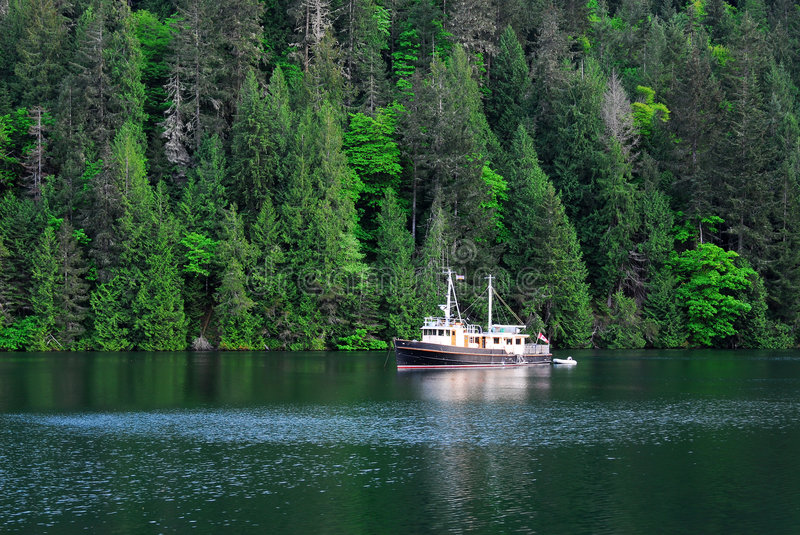 Download Peaceful Sea Cove And Forests Stock Image - Image: 5242767