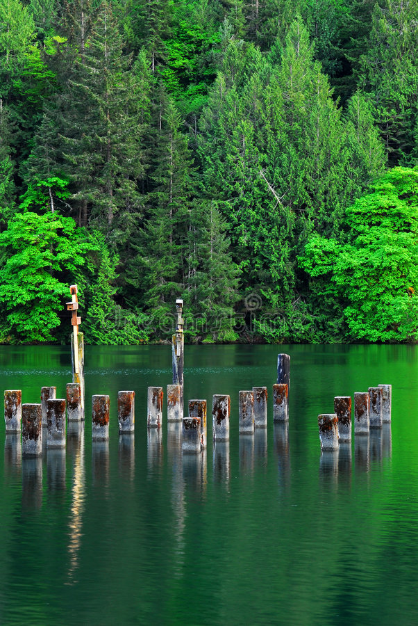 Peaceful Sea Cove And Forests Stock Images