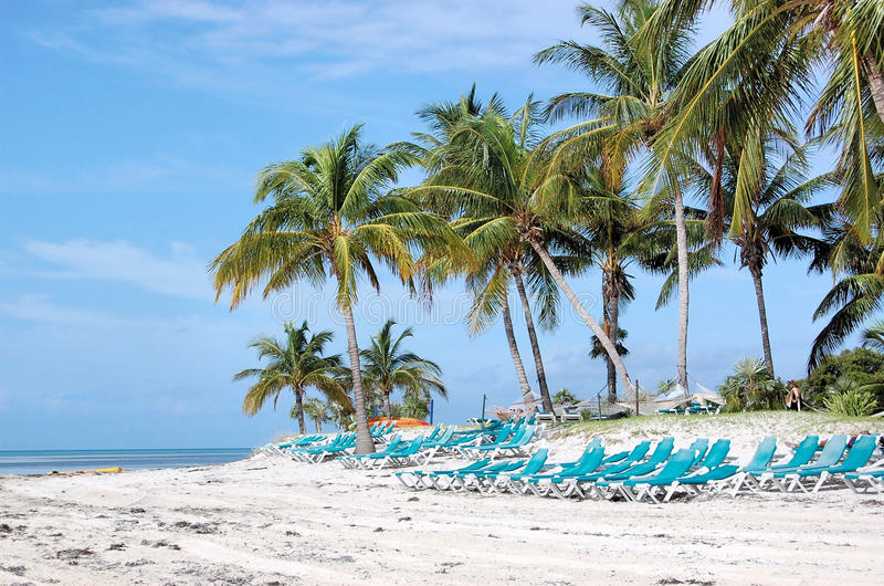 Beach Chairs Palm Trees Tropical Island royalty free stock image