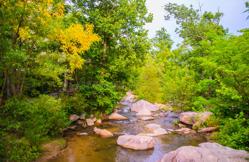 Peaceful Stream in Chimney Rock, North Carolina royalty free stock photo