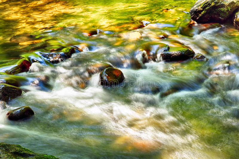 Peaceful Stream in Green and Yellow. Details of a peaceful stream running the forest with the green and yellow colors reflecting in the water royalty free stock photo