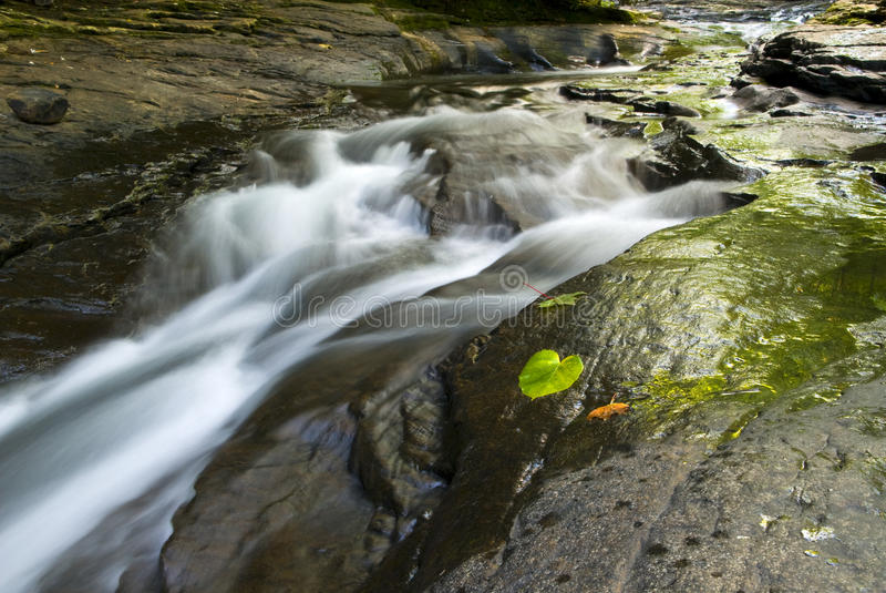 Peaceful Stream In Pennsylvania Royalty Free Stock Image