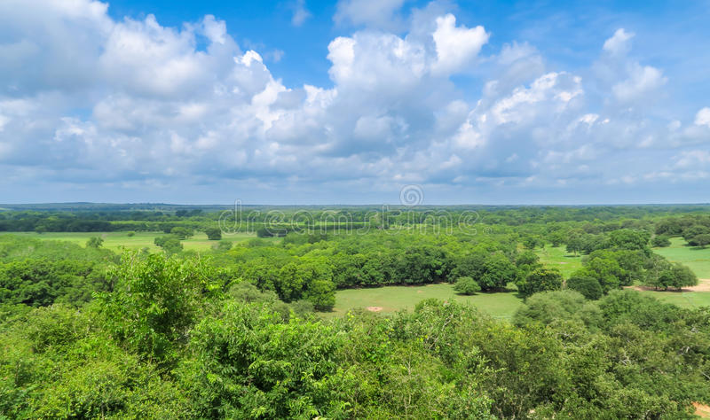 A peaceful Texas landscape. And a sky full of clouds royalty free stock photography