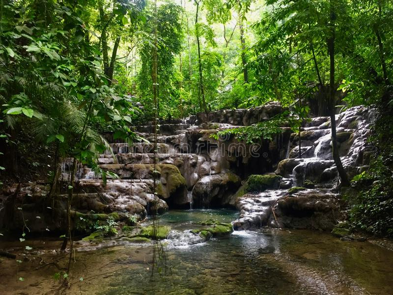 Peaceful waterfall in National Park Palenque royalty free stock image