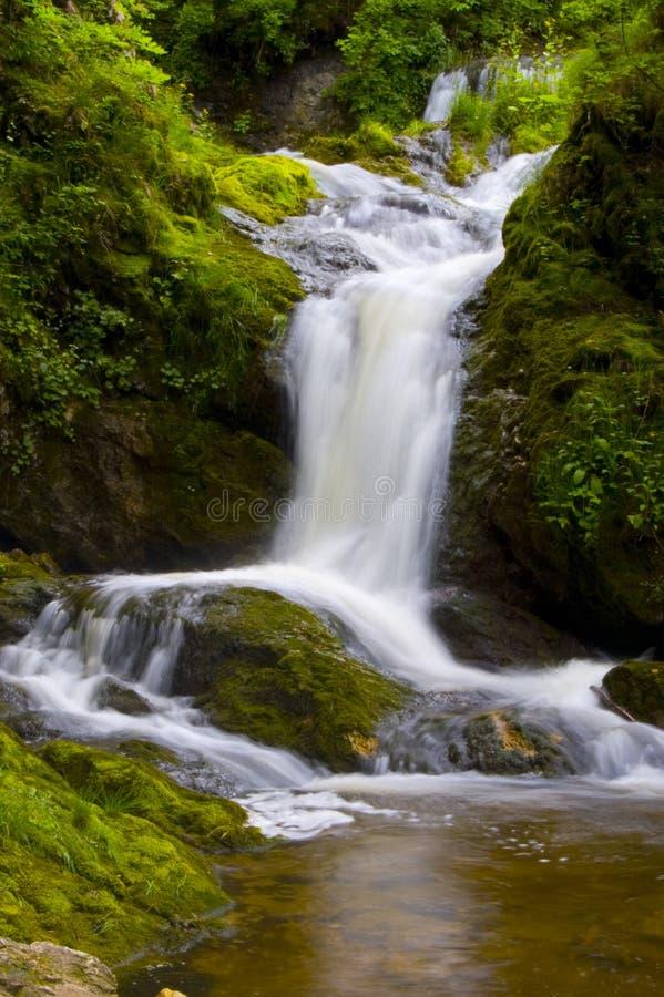 Free Peaceful Waterfall Scene Stock Image - 5662841
