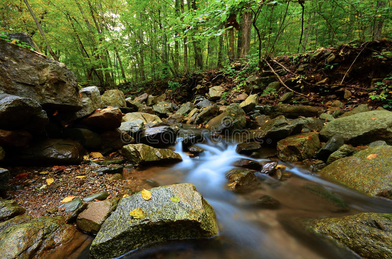 Download Peaceful Woodland Stream stock image. Image of creek - 21303255