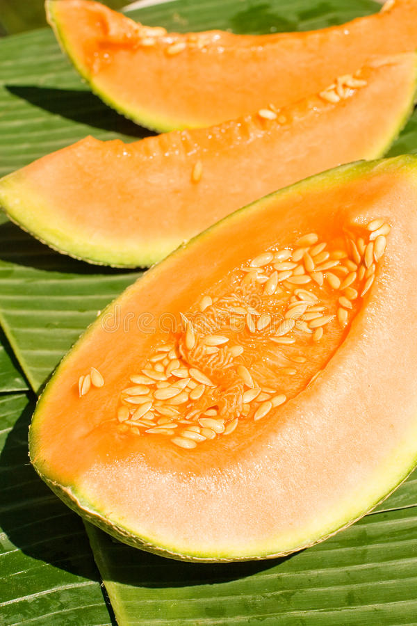 Free Peaces Of Melon Stock Images - 14256434