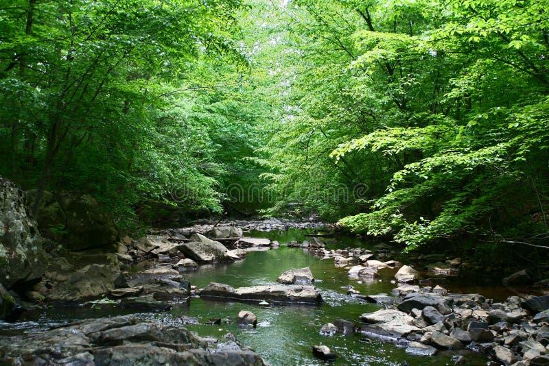 Peacful Creek royalty free stock image