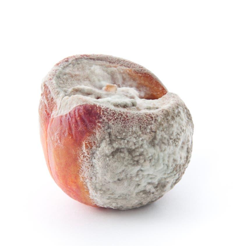 Free Peach Royalty Free Stock Image - 16636466