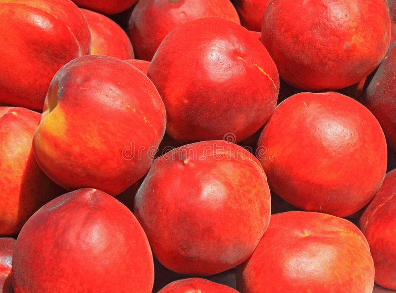 Download Peach Background stock image. Image of plenty, color - 42116547