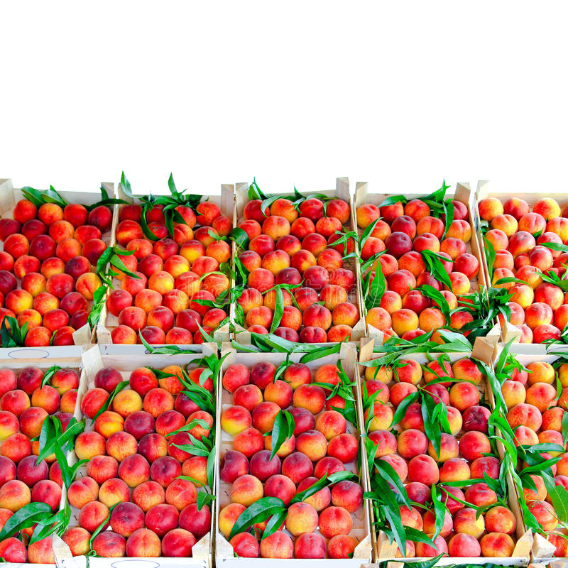 Peach crates. Fresh organic peaches in crates sold on market stock photos