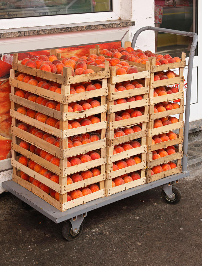 Peach crates. Peach fruits in crates at transport cart stock image