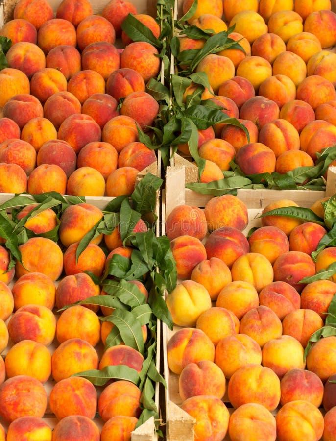 Peach in crates stock photos