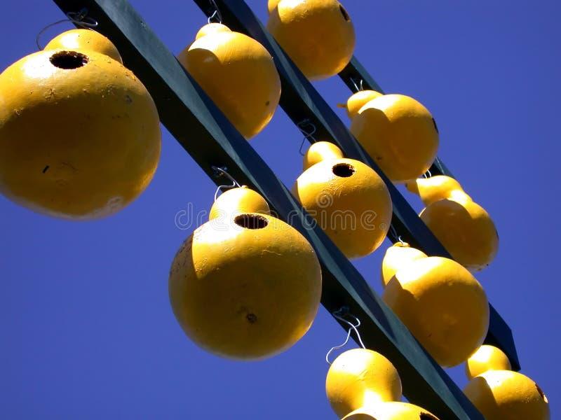 Peach Display Stock Photos