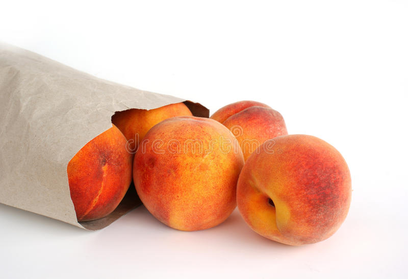 Download Peach fruit stock photo. Image of white, peaches, isolated - 16131372