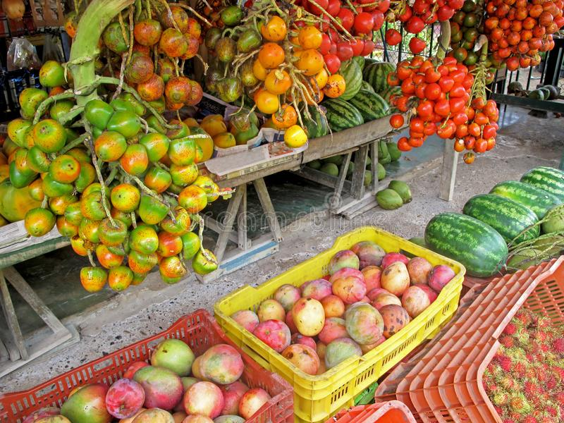 Peach palm fruits, Bactris Gasipaes, displayed with other fruits at market in Costa Rica, Central America stock photography