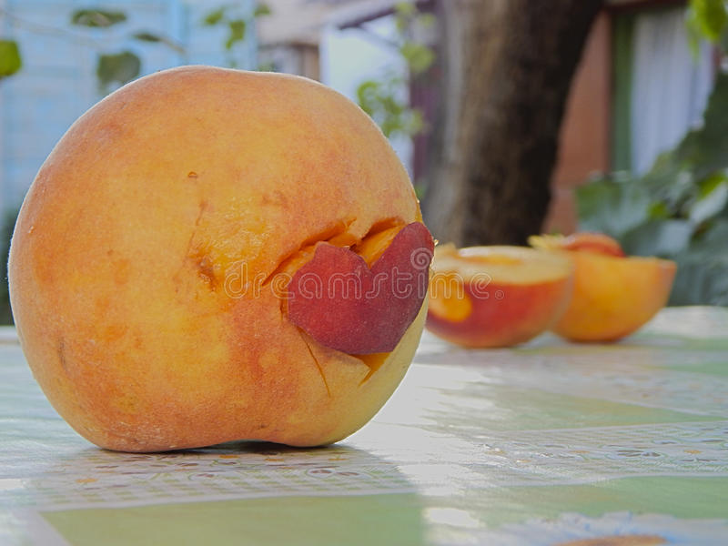Peach stock images