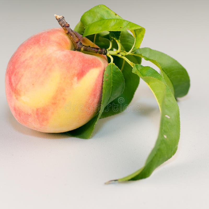 Download Peach on Table stock image. Image of fruit, seasonal - 15384107