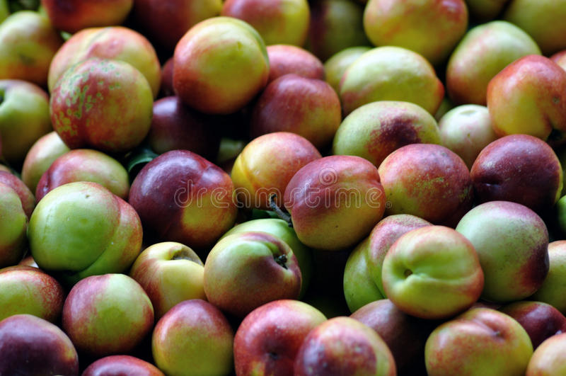 Download Peaches stock image. Image of bunch, fresh, skin, pile - 14612627