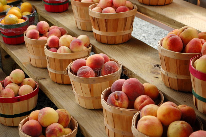 Download Peaches stock image. Image of baskets, peach, sweet, ripe - 26213955