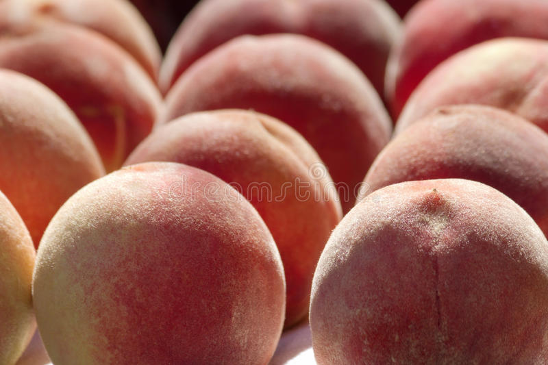 Download Peaches stock image. Image of fresh, backlit, ripe, healthy - 26456811