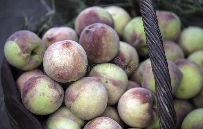 Download Peaches in a basket stock image. Image of feed, agriculture - 26627943