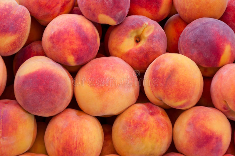 Download Peaches close up. stock image. Image of summer, health - 21297355