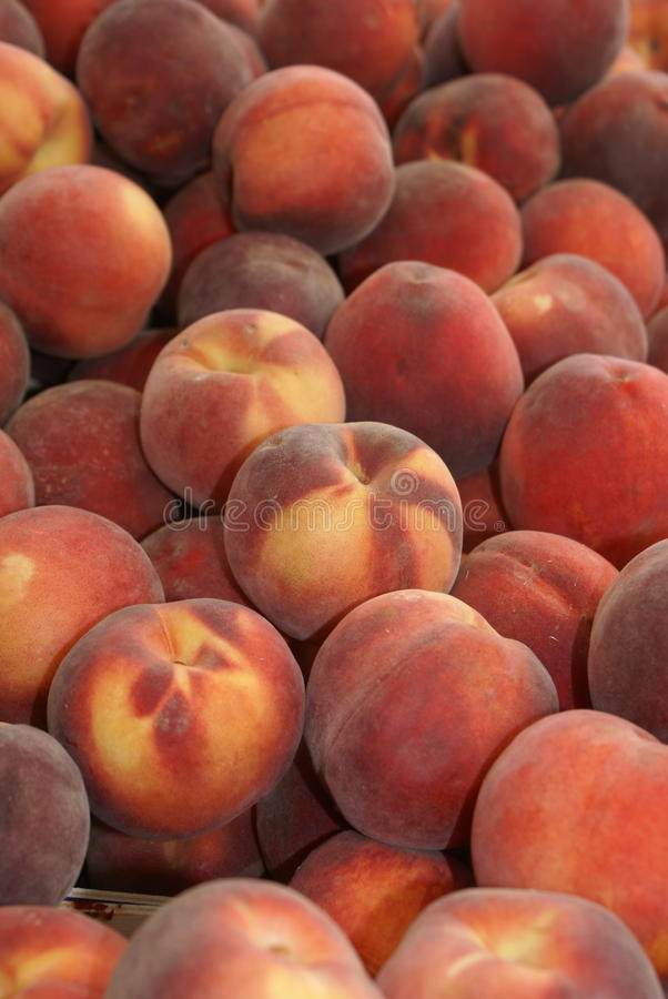 Peaches in a giant peach pile. Pile of peach fruit on an open air market stall royalty free stock image