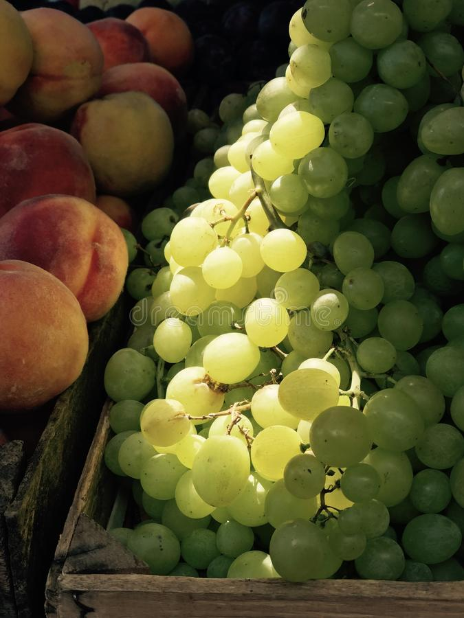 Peaches & grapes bask in the morning sun and are a delicious natural treat. A grape is a fruit, botanically a berry, of the deciduous woody vines of the royalty free stock images