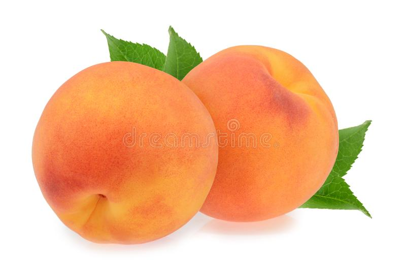 Peaches isolated on white royalty free stock image
