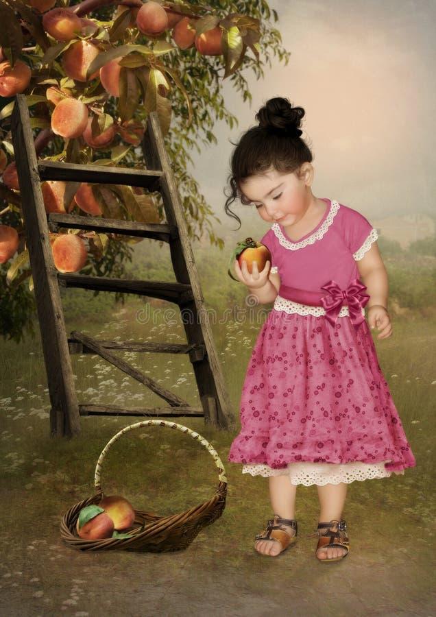 Peachy tuin stock foto's