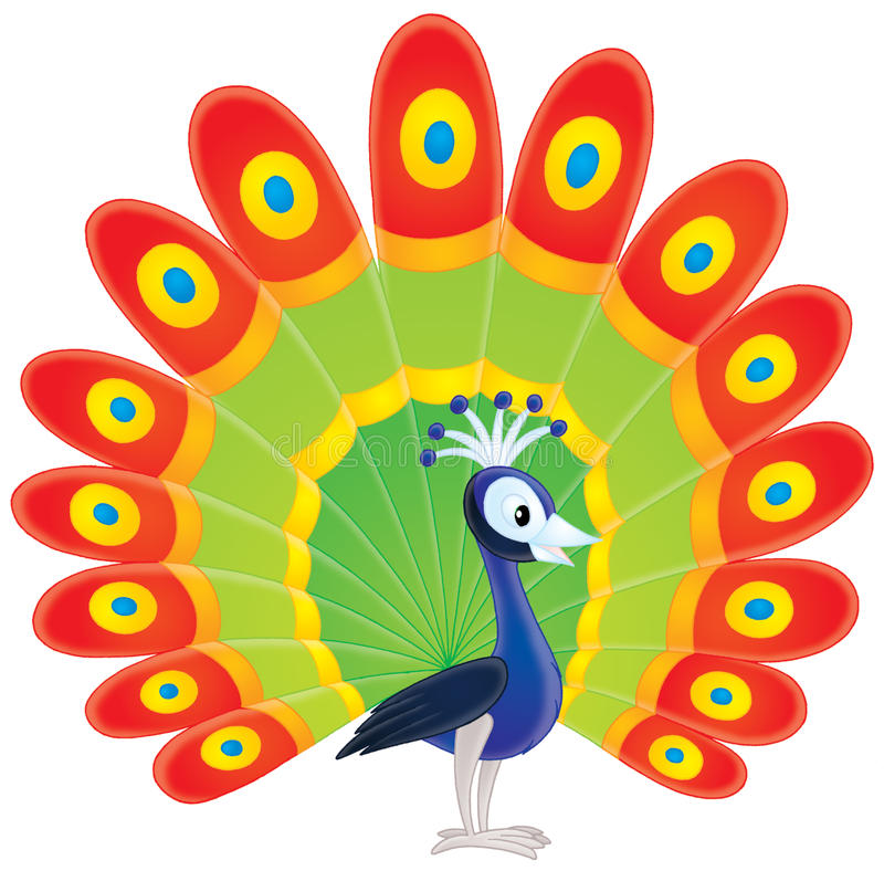 Download Peacock stock illustration. Image of multicolored, peafowl - 17198389
