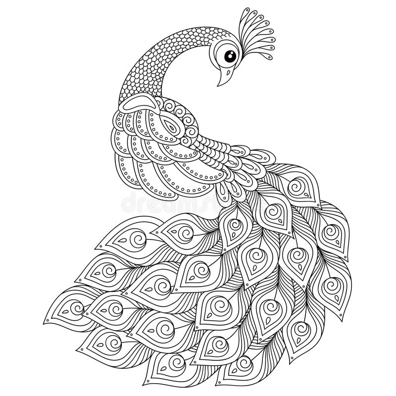 Peacock. Adult Antistress Coloring Page. Stock Vector - Illustration ...