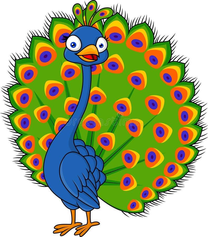 Peacock cartoon vector illustration