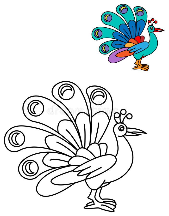 Peacock color book stock vector. Illustration of floral - 76036176