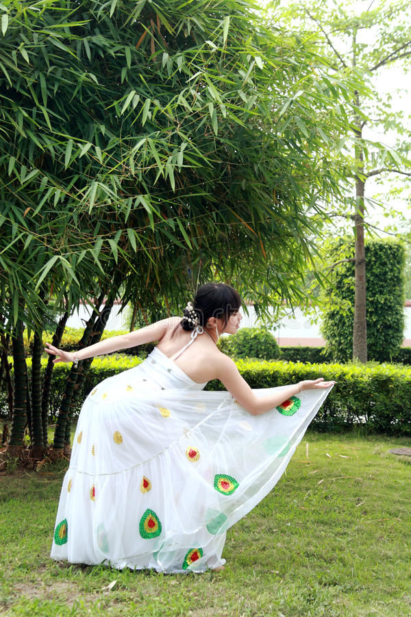 Download Peacock dance stock image. Image of china, leisure, imitation - 12132529