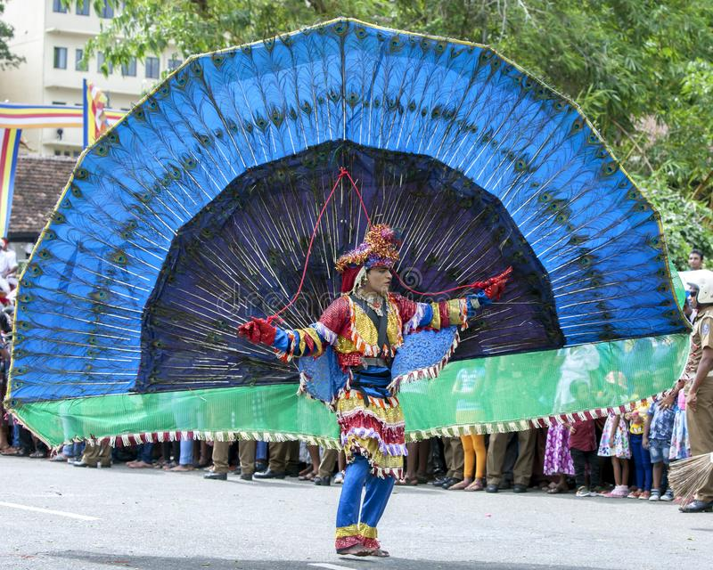 A Peacock Dancer performs along a street in Kandy stock photo