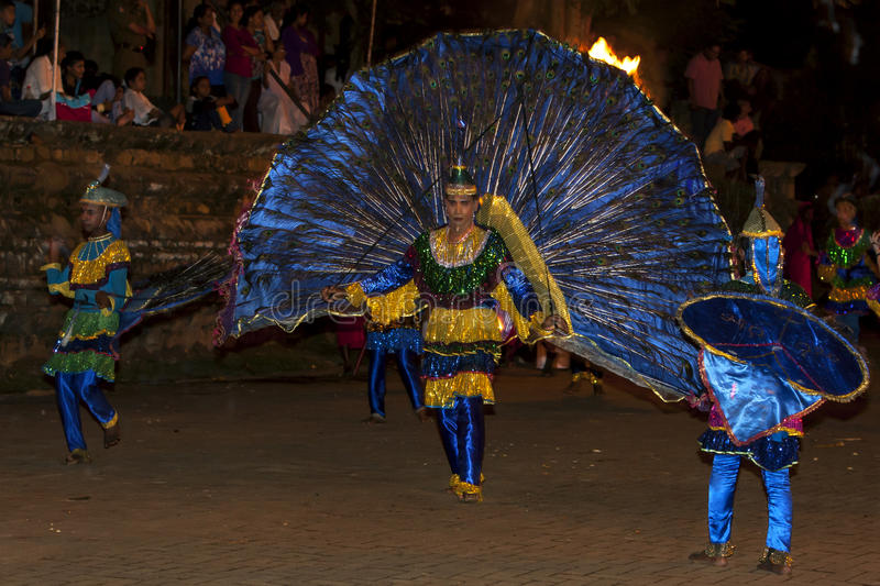 Peacock dancers perform during the Esala Perahera in Kandy, Sri Lanka. The Esala Perahera is held to honour the Sacred Tooth Relic of Lord Buddha (which is royalty free stock images